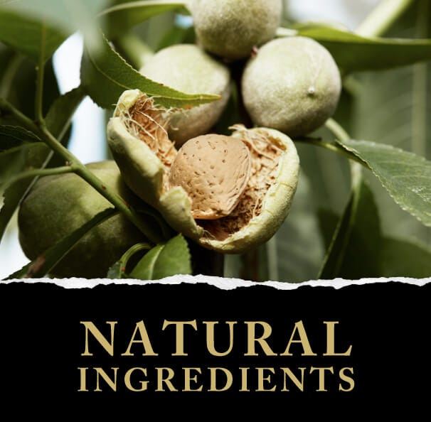 Green & Black's Natural Ingredients