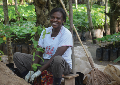Ethically Sourced Cocoa